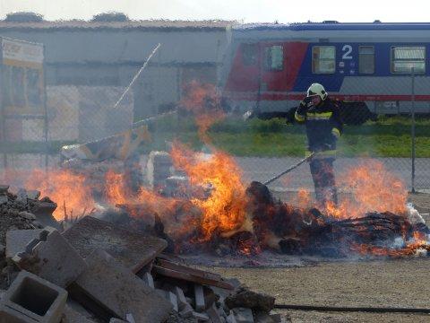 Feuerwehreinsatz wegen Buchsbaumzünsler