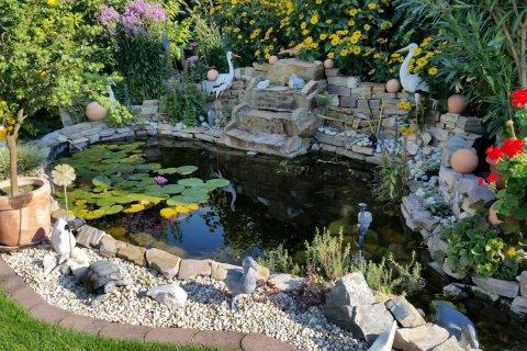 Teich mit Wasserfall - Garten - Wasser - Stein