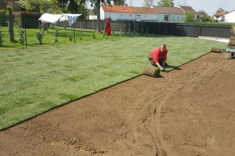 Rasen wird ausgerollt