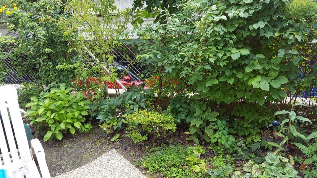 Wohnzimmer und Kamin gartengestaltung liegeplatz : klein-aber-oho - Garten - Wasser - Stein